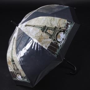 Automatický průhledný dámský deštník Bessy