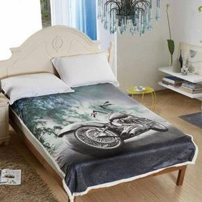 Beránková deka s 3D efektem Harley