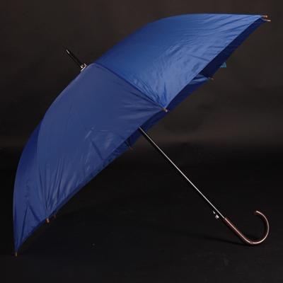 Velký holový deštník Rene světle modrý - 1
