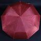 Luxusní dámský skládací deštník Nina červený - 1/2