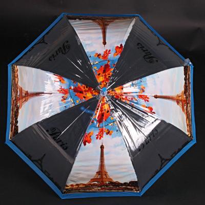 Automatický průhledný dámský deštník Dean modrý - 1