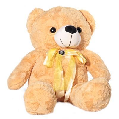 Plyšový medvěd 70 cm Pufík