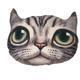 Nadýchaný polštář kočka Elvis - 1/3
