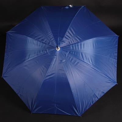 Velký holový deštník Rene světle modrý - 2