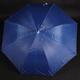 Velký holový deštník Rene světle modrý - 2/2