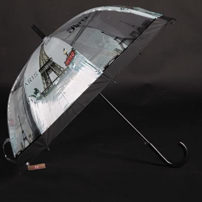 Automatický průhledný dámský deštník Dean černý - 2